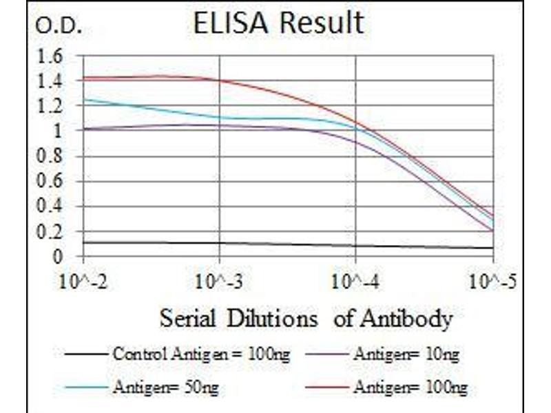 ELISA image for anti-Fibroblast Growth Factor 4 (FGF4) (AA 62-123) antibody (ABIN4880289)