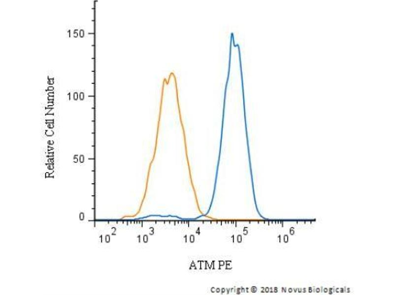 Flow Cytometry (FACS) image for anti-Ataxia Telangiectasia Mutated (ATM) (C-Term) antibody (ABIN151030)