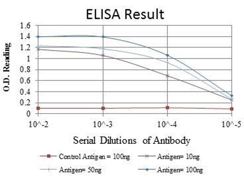 ELISA image for anti-C-JUN antibody (Jun Proto-Oncogene) (ABIN968995)