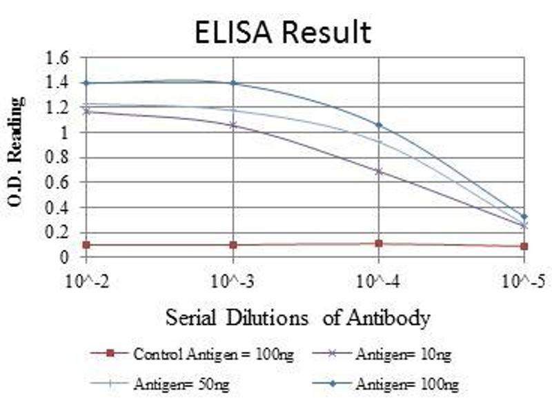 ELISA image for anti-Jun Proto-Oncogene (JUN) antibody (ABIN968995)