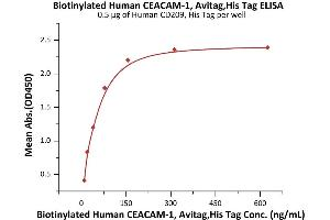 Image no. 1 for Carcinoembryonic Antigen-Related Cell Adhesion Molecule 1 (Biliary Glycoprotein) (CEACAM1) (AA 35-428) protein (His tag,AVI tag,Biotin) (ABIN3137678)