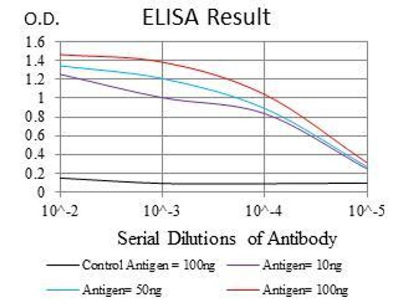 ELISA image for anti-MutS Homolog 6 (E. Coli) (MSH6) antibody (ABIN969293)