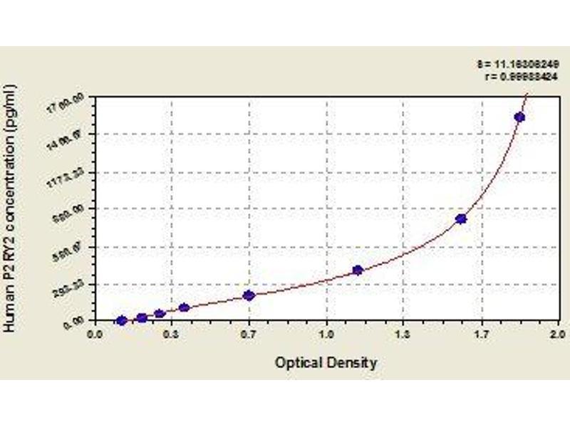 Purinergic Receptor P2Y, G-Protein Coupled, 2 (P2RY2) ELISA Kit