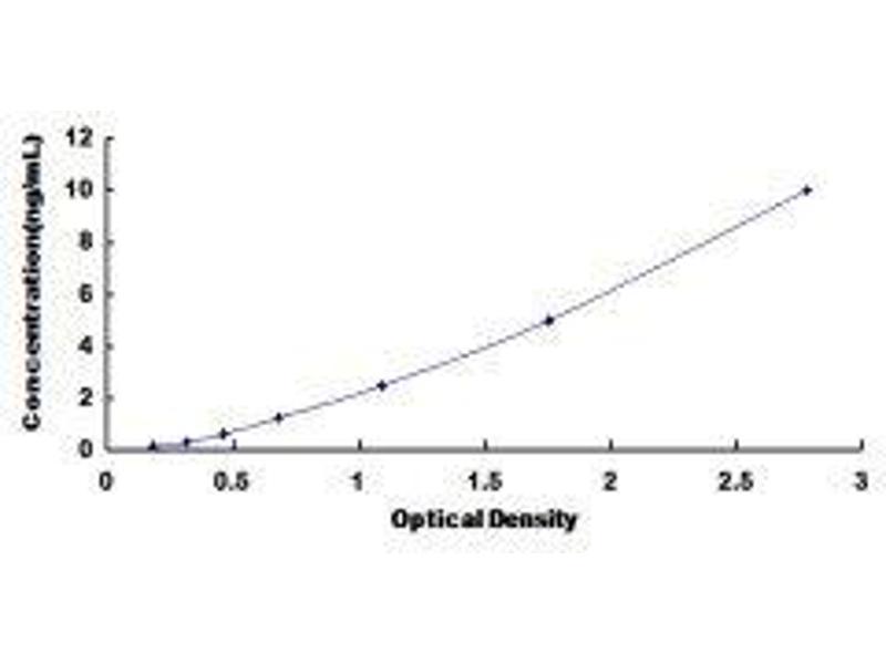 DNA-Damage-Inducible Transcript 3 (DDIT3) ELISA Kit