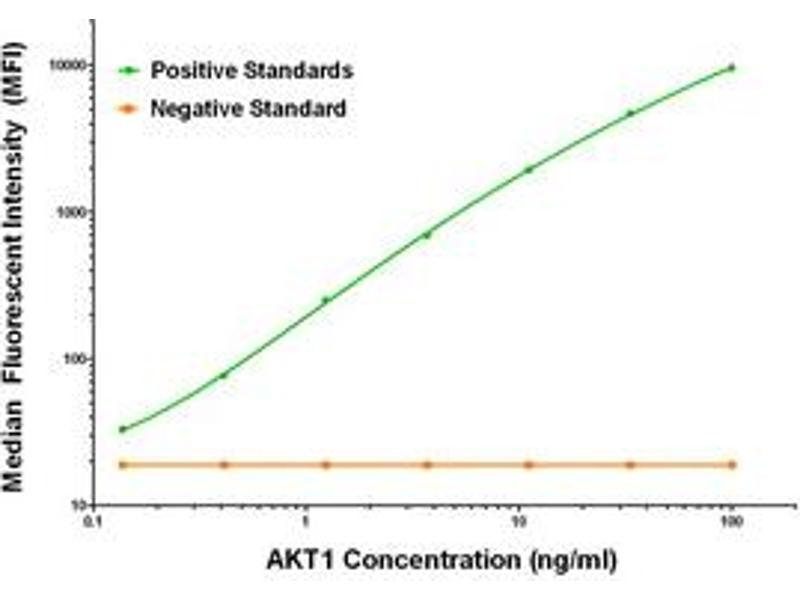 Luminex Assay (LMNX) image for anti-V-Akt Murine Thymoma Viral Oncogene Homolog 1 (AKT1) antibody (ABIN2715845)