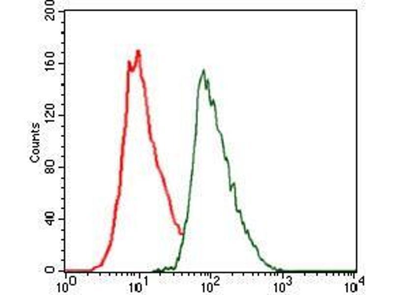 Flow Cytometry (FACS) image for anti-CCAAT/enhancer Binding Protein (C/EBP), alpha (CEBPA) antibody (ABIN969507)