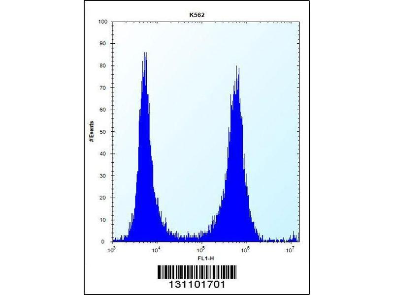 Flow Cytometry (FACS) image for anti-Ficolin (Collagen/fibrinogen Domain Containing) 3 (Hakata Antigen) (FCN3) (AA 214-243), (C-Term) antibody (ABIN656492)