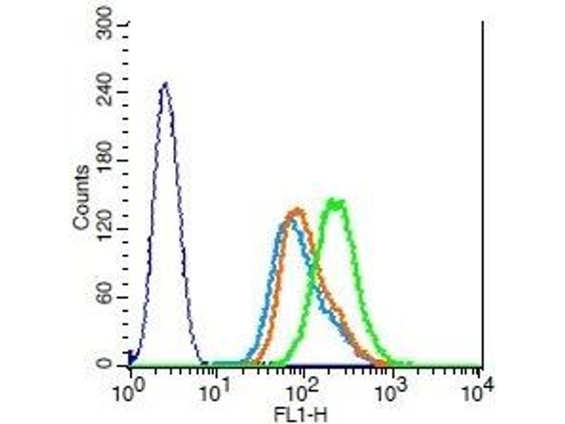 Flow Cytometry (FACS) image for anti-Tumor Necrosis Factor (Ligand) Superfamily, Member 11 (TNFSF11) (AA 270-317) antibody (ABIN672696)