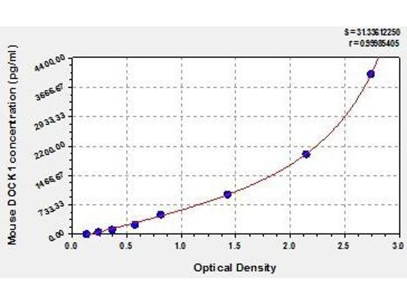 Dedicator of Cytokinesis 1 (DOCK1) ELISA Kit