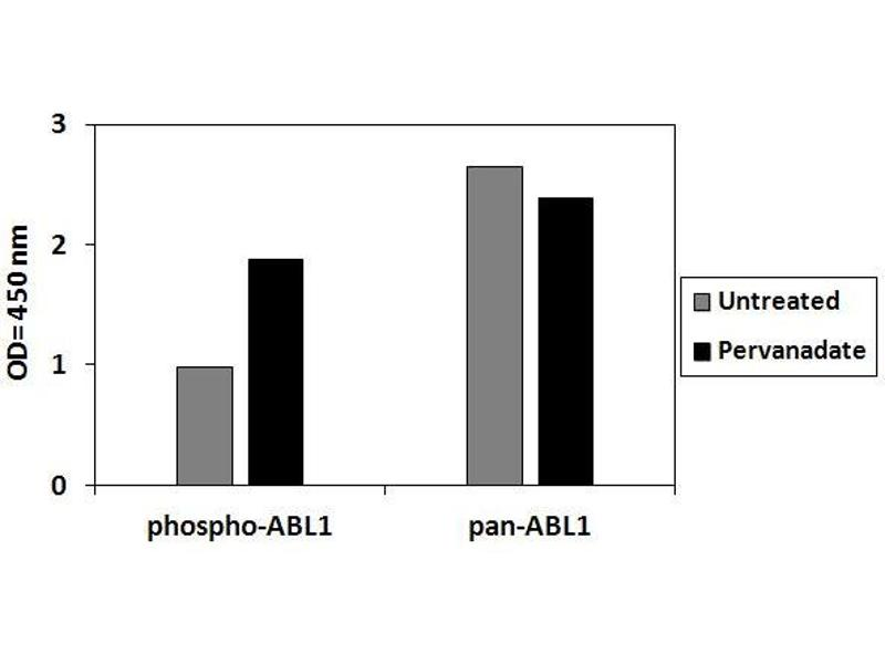 Image no. 2 for C-Abl Oncogene 1, Non-Receptor tyrosine Kinase (ABL1) ELISA Kit (ABIN6730567)