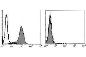 Flow Cytometry (FACS) image for anti-Fas Ligand (TNF Superfamily, Member 6) (FASL) antibody (ABIN1105941)
