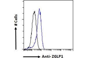 Image no. 1 for anti-Zinc Finger, GATA-Like Protein 1 (ZGLP1) (Internal Region) antibody (ABIN570846)