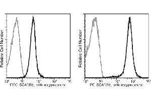 Image no. 1 for anti-Scavenger Receptor Class B, Member 2 (SCARB2) (AA 1-432) antibody (FITC) (ABIN2000217)