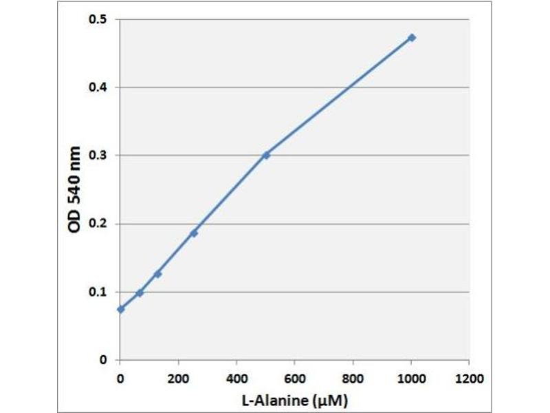 Biochemical Assay (BCA) image for L-Amino Acid Assay Kit (Colorimetric) (ABIN5067586)