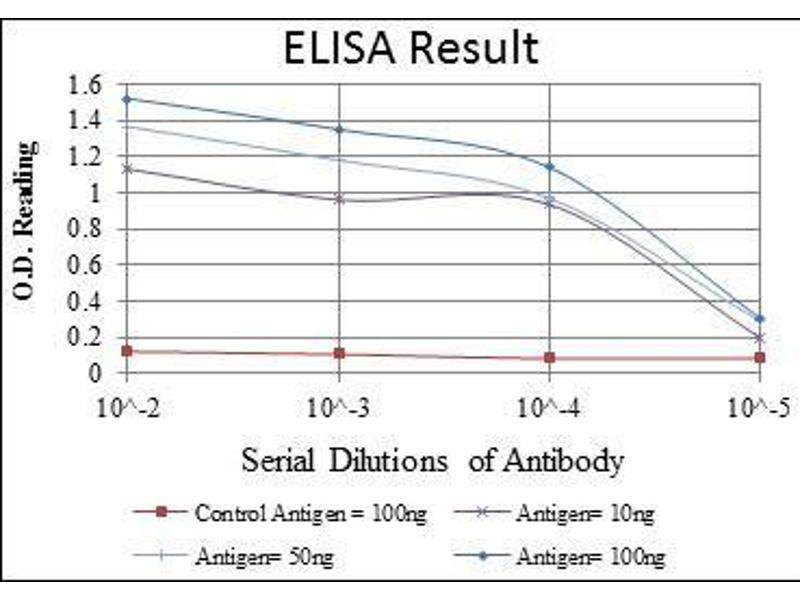ELISA image for anti-Heat Shock 60kDa Protein 1 (Chaperonin) (HSPD1) antibody (ABIN4880329)