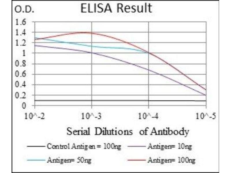 ELISA image for anti-Interleukin 3 Receptor, alpha (Low Affinity) (IL3RA) antibody (ABIN4325125)