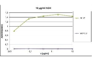 Image no. 1 for anti-Growth Hormone 1 (GH1) antibody (ABIN94320)