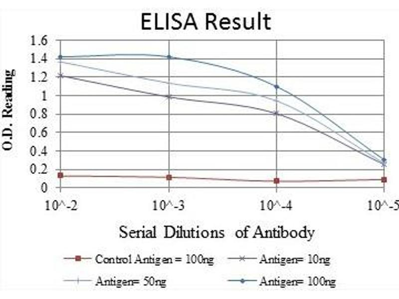 ELISA image for anti-C-JUN antibody (Jun Proto-Oncogene) (ABIN1105389)