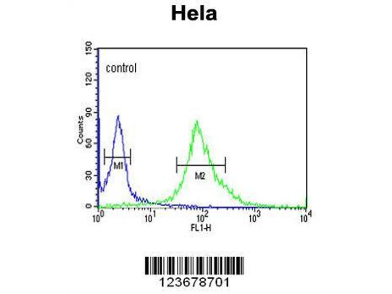 Flow Cytometry (FACS) image for anti-DDX49 antibody (DEAD (Asp-Glu-Ala-Asp) Box Polypeptide 49) (AA 385-413) (ABIN653921)
