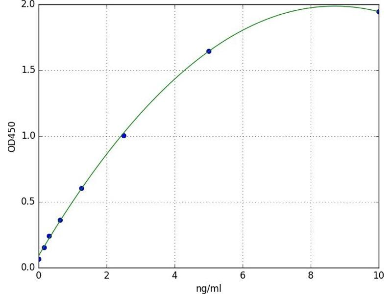 Microtubule-Associated Protein 1 Light Chain 3 alpha (MAP1LC3A) ELISA Kit