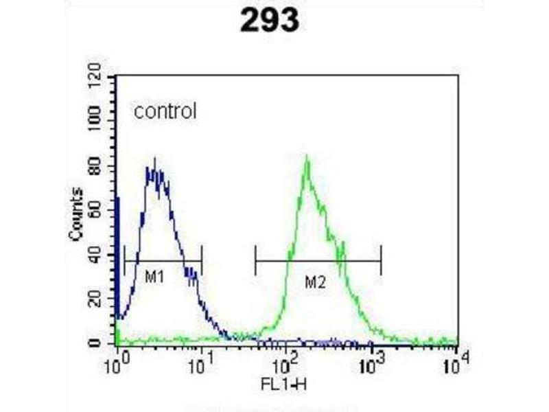 Flow Cytometry (FACS) image for anti-Kallikrein 6 (KLK6) antibody (ABIN3002615)