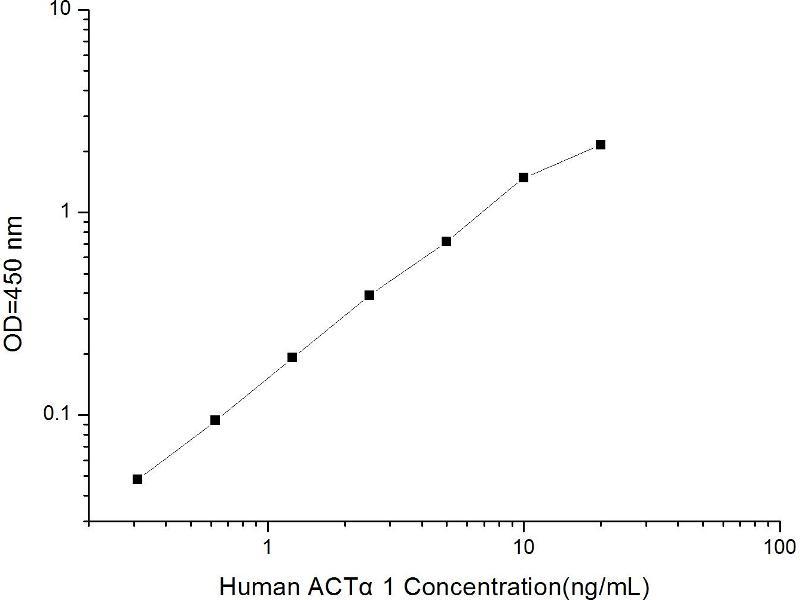 Actin, alpha 1, Skeletal Muscle (ACTA1) ELISA Kit (2)
