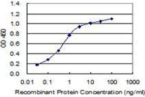Image no. 1 for anti-Mitochondrially Encoded NADH Dehydrogenase 1 (MT-ND1) (AA 21-71) antibody (ABIN2565715)