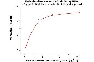 Image no. 3 for Poliovirus Receptor-Related 4 (PVRL4) (AA 32-349) (Active) protein (His tag,AVI tag,Biotin) (ABIN6938938)