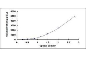Image no. 1 for Growth Differentiation Factor 9 (GDF9) ELISA Kit (ABIN6956334)