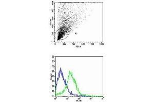 Flow Cytometry (FACS) image for anti-CD40 Ligand (CD40LG) (AA 47-80) antibody (ABIN674439)