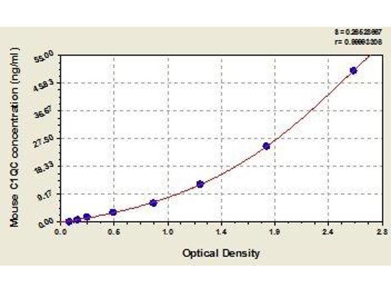 Complement Component 1, Q Subcomponent, C Chain (C1QC) ELISA Kit