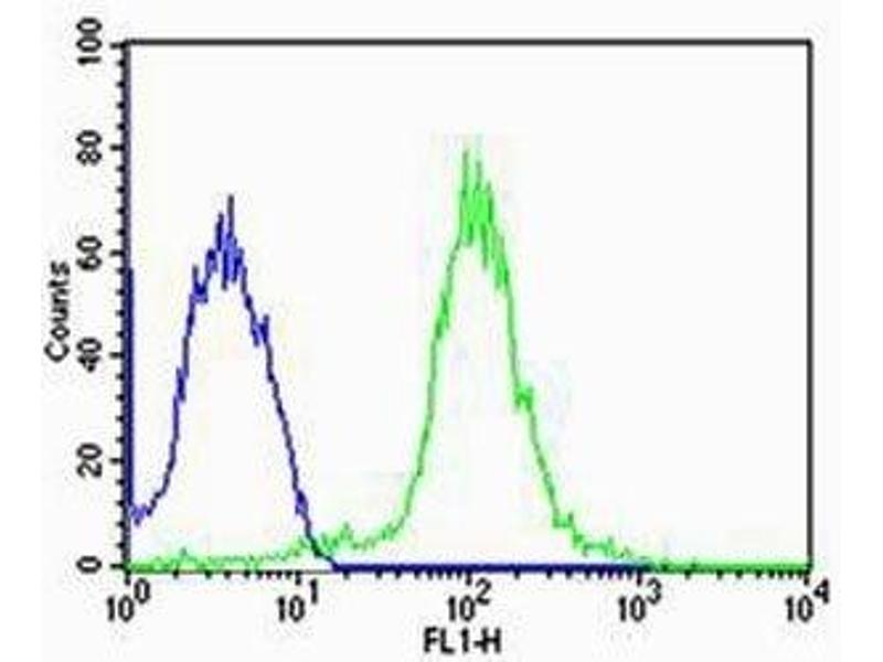 Flow Cytometry (FACS) image for anti-Tubulin, alpha 1c (TUBA1C) (N-Term) antibody (ABIN3029335)