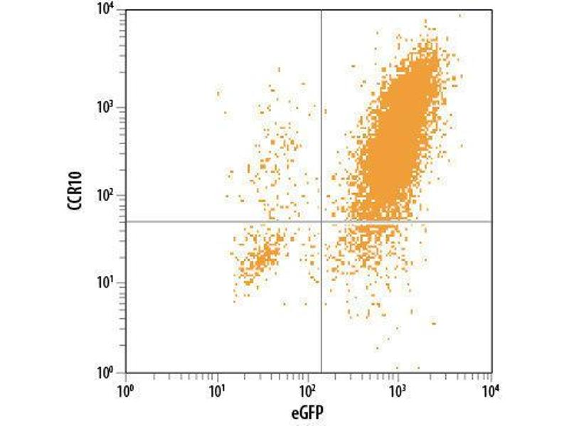 Flow Cytometry (FACS) image for anti-Chemokine (C-C Motif) Receptor 10 (CCR10) (AA 1-362) antibody (PE) (ABIN4895516)