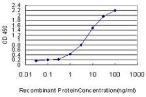Image no. 1 for anti-Protein Kinase, CGMP-Dependent, Type I (PRKG1) (AA 73-170) antibody (ABIN562400)
