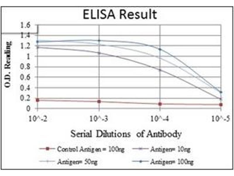 ELISA image for anti-CD1a Molecule (CD1A) antibody (ABIN1105997)