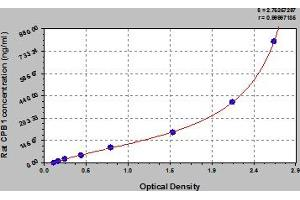 Image no. 1 for Carboxypeptidase B1 (Tissue) (CPB1) ELISA Kit (ABIN6974445)