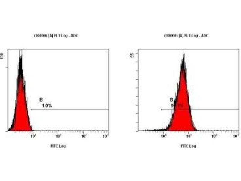 Flow Cytometry (FACS) image for anti-Teratocarcinoma-Derived Growth Factor 1 (TDGF1) (AA 1-50), (N-Term) antibody (ABIN151145)