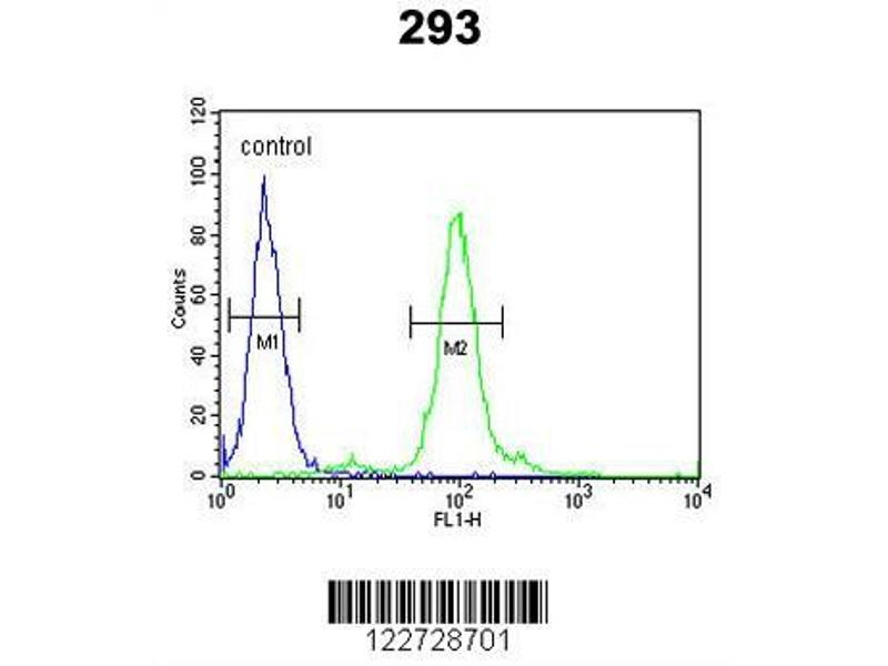 Flow Cytometry (FACS) image for anti-FAU antibody (Finkel-Biskis-Reilly Murine Sarcoma Virus (FBR-MuSV) Ubiquitously Expressed) (ABIN650648)