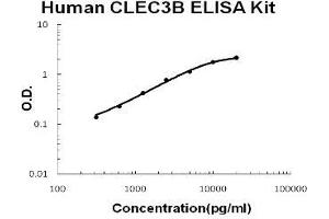 Image no. 1 for C-Type Lectin Domain Family 3, Member B (CLEC3B) ELISA Kit (ABIN1889405)
