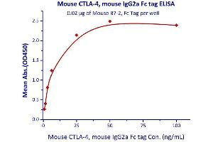Image no. 1 for Cytotoxic T-Lymphocyte-Associated Protein 4 (CTLA4) (AA 36-162) (Active) protein (Fc Tag) (ABIN4949168)