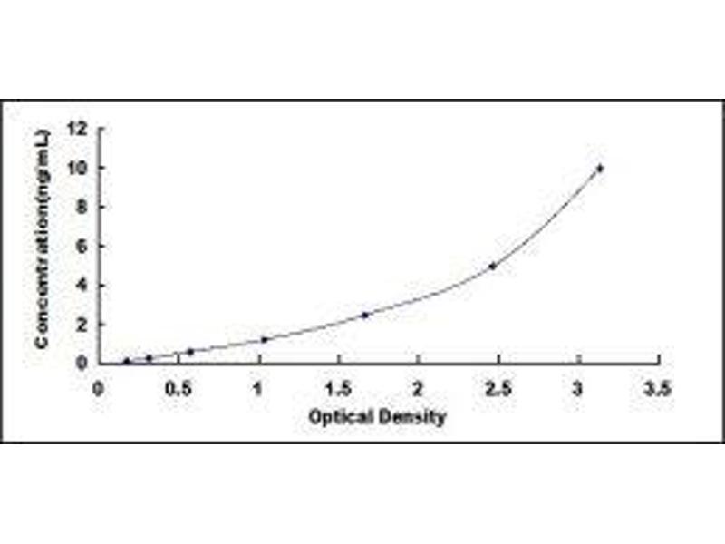 Beclin 1, Autophagy Related (BECN1) ELISA Kit