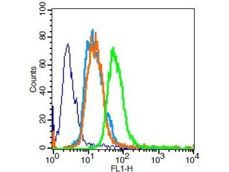 Flow Cytometry (FACS) image for anti-Peroxisome Proliferator-Activated Receptor gamma (PPARG) (AA 170-220) antibody (ABIN1386283)