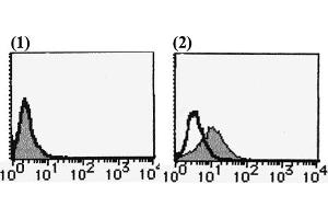 Flow Cytometry (FACS) image for anti-PDGFRA antibody (Platelet-Derived Growth Factor Receptor, alpha Polypeptide)  (FITC) (ABIN492425)