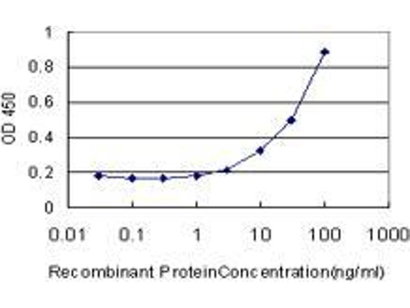 ELISA image for anti-Calcium/calmodulin-Dependent Protein Kinase II alpha (CAMK2A) (AA 305-410) antibody (ABIN393584)