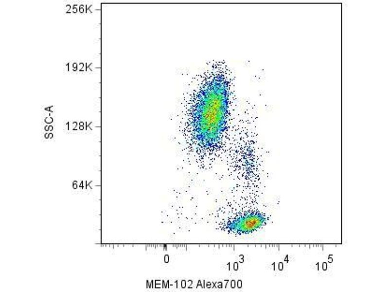 CD48 antibody ABIN192135