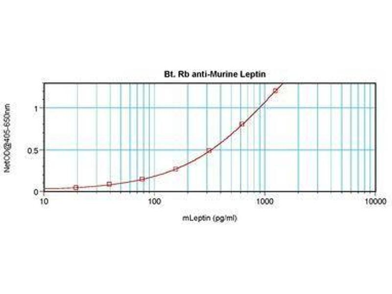 image for anti-Leptin (LEP) antibody (Biotin) (ABIN465756)