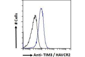 Image no. 1 for anti-Hepatitis A Virus Cellular Receptor 2 (TIM 3) (Internal Region) antibody (ABIN185571)