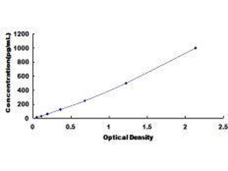 Chemokine (C-X-C Motif) Ligand 2 (CXCL2) ELISA Kit