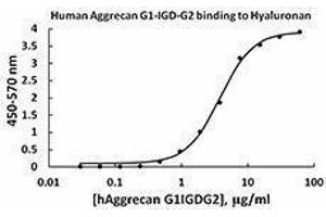 Flow Cytometry (FACS) image for Aggrecan (ACAN) (AA 20-675) (Active) protein (ABIN2666766)