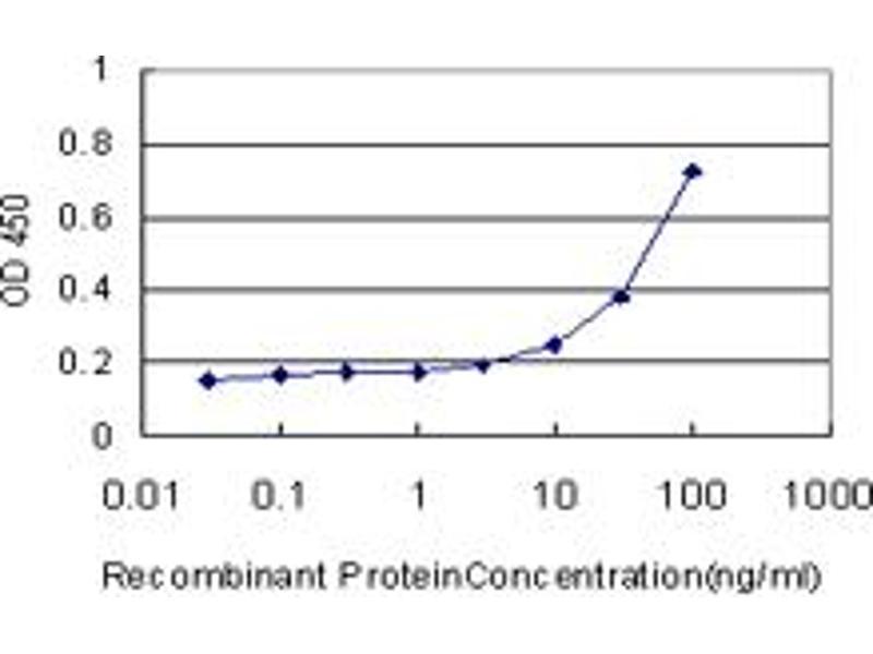 ELISA image for anti-CAMK2A antibody (Calcium/calmodulin-Dependent Protein Kinase II alpha) (AA 305-410) (ABIN513971)